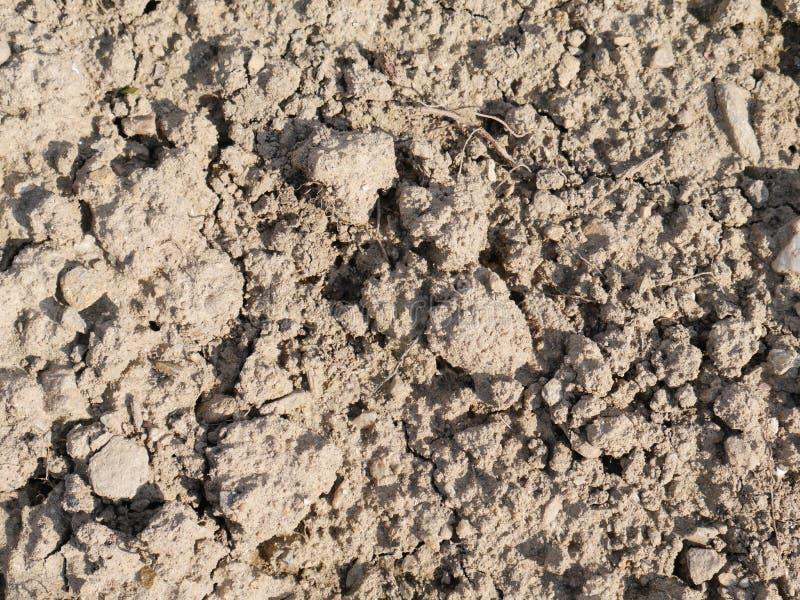 Protuberâncias da terra da argila na luz do dia natural imagem de stock