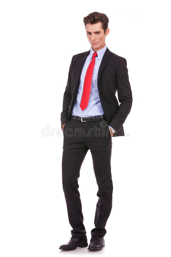 Download Proud business man poses stock photo. Image of full, handsome - 27075760