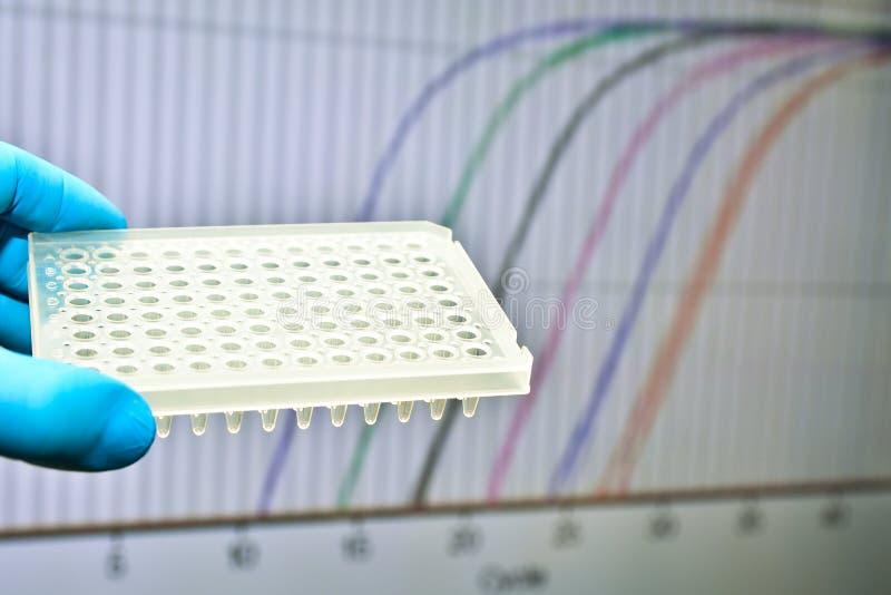 Prova del DNA con il metodo in tempo reale di PCR fotografia stock