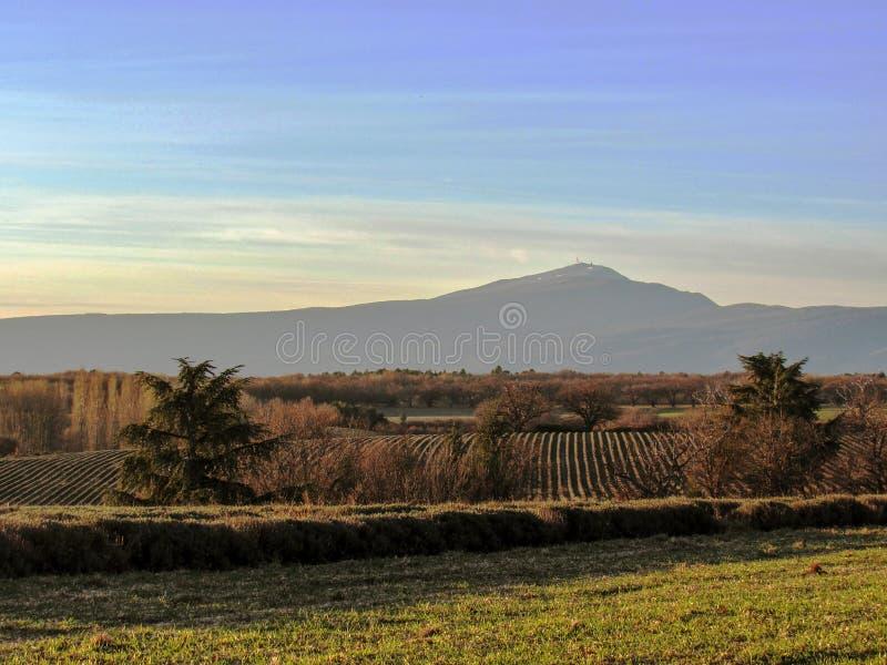 Provancal krajobraz przy zmierzchu czasem w zimie, Provence, Południowy Francja, Europa fotografia royalty free