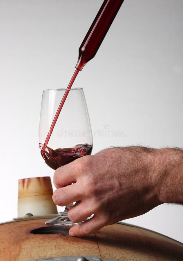 Provando o vinho de um tambor do carvalho foto de stock