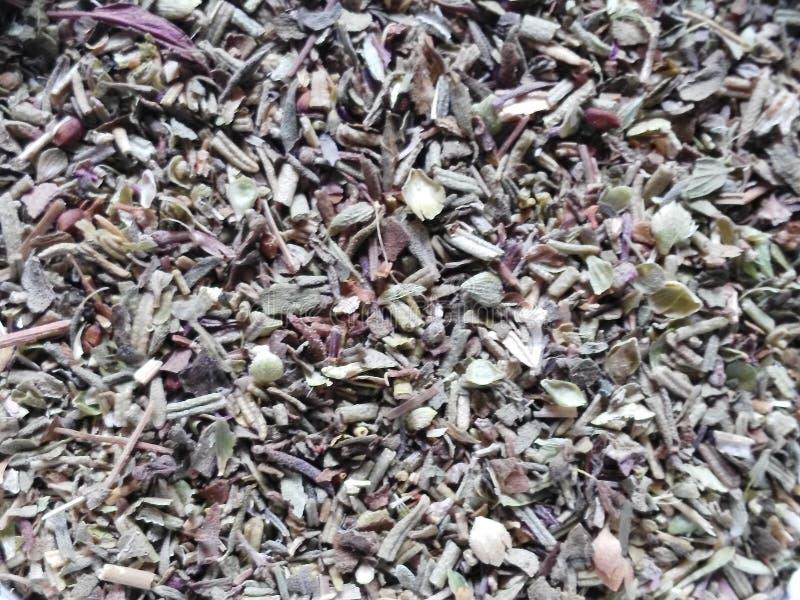 Provencal herbs royalty free stock image
