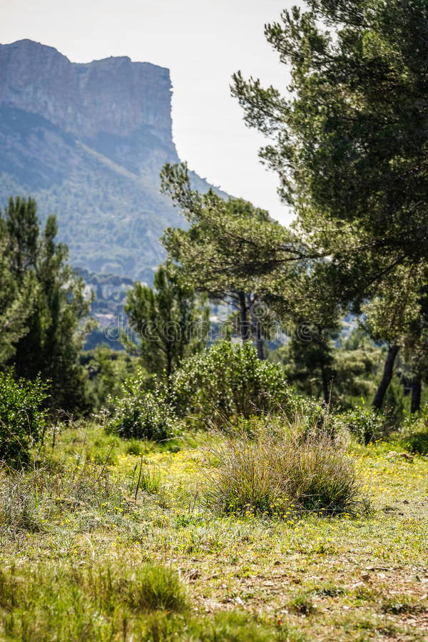 Provencal landscape. Landscape in the provencal region, South east of France, by a sunny day along the mediterranean sea royalty free stock photo