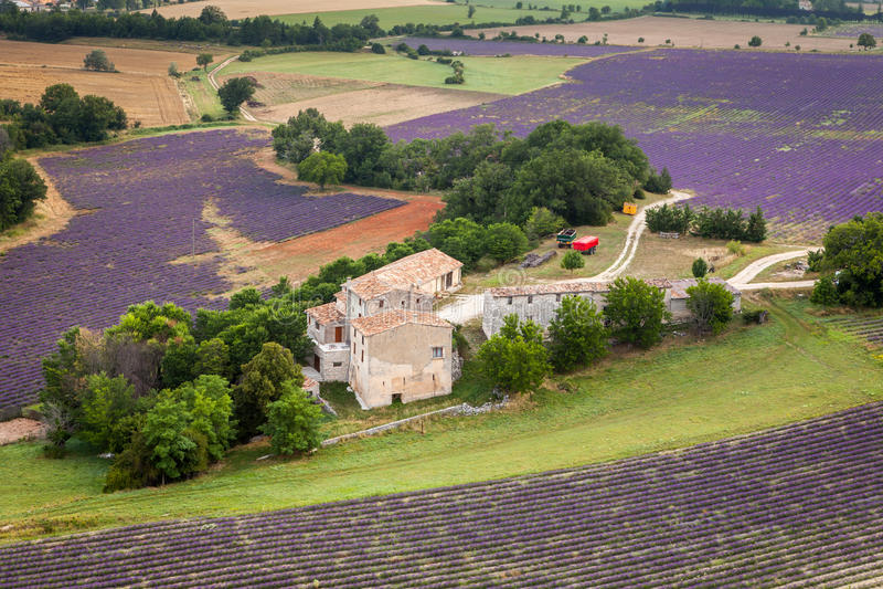 Provencal lantgård nära Sault, Provence, Frankrike arkivfoto