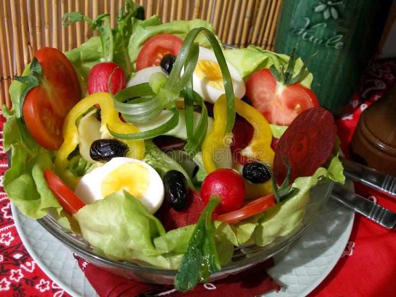 Provencal Salat lizenzfreies stockbild
