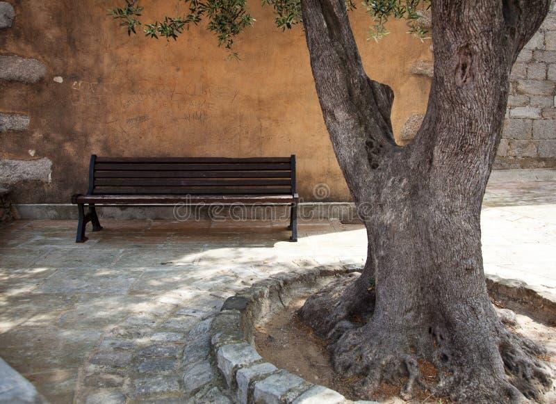 provencal traditionell landskapgata arkivfoto