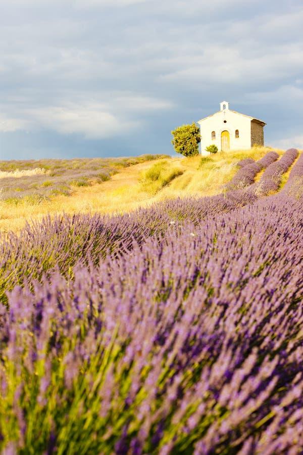 Provence imagem de stock