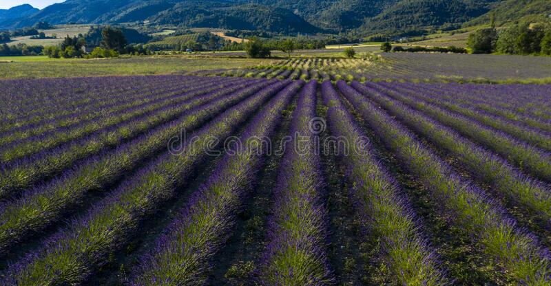 Provence in France stock photos