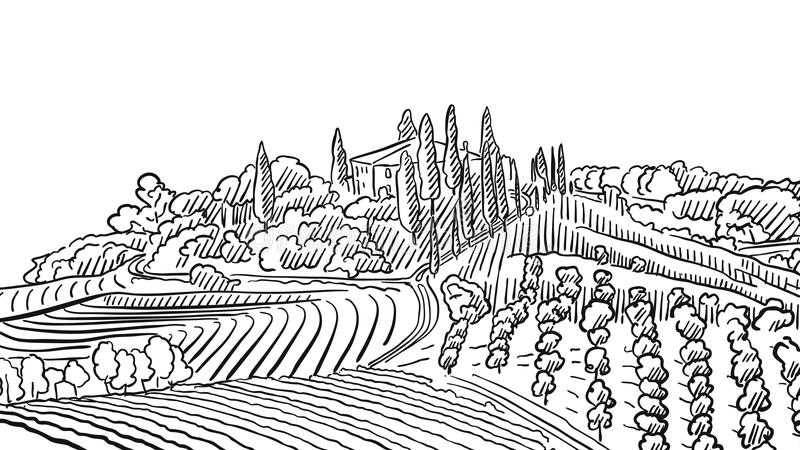 Provence Landscape Apple Plant and Vineyard. Vector Sketched Outline Artwork vector illustration