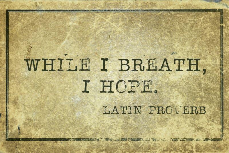 Proverbio de la respiración de la esperanza fotografía de archivo libre de regalías