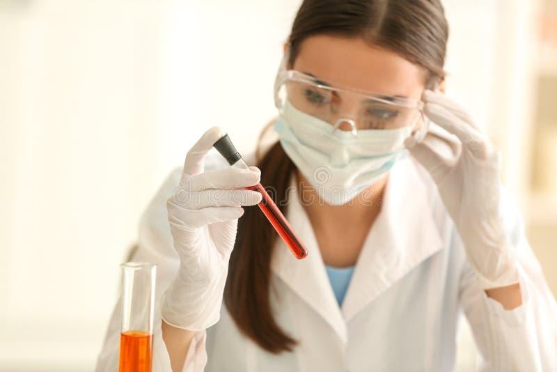 Provetta femminile della tenuta dello scienziato con il campione di colore in laboratorio fotografia stock