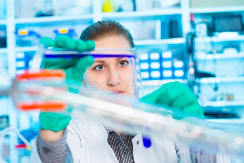 Provette della tenuta della giovane donna del ricercatore con i prodotti chimici in a immagini stock