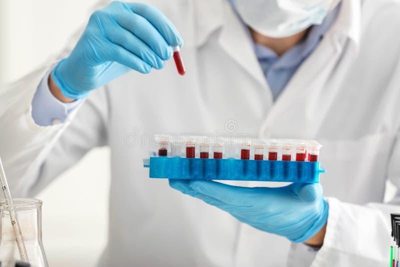 Provette della tenuta dello scienziato con i campioni di sangue, primo piano immagine stock