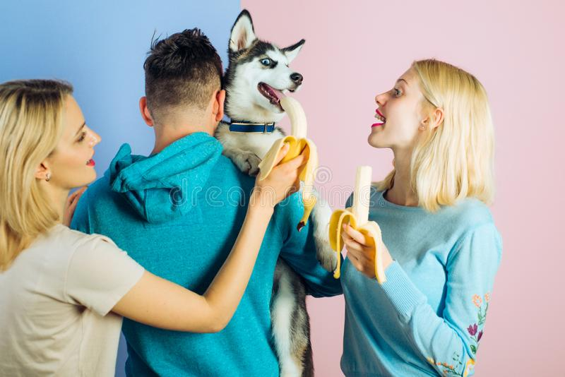 Providing him different vitamins and minerals. Pet sitters feed the pet. Happy women and man play with family pet. Group stock images