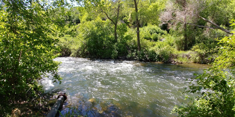 Provo rzeka zdjęcie stock