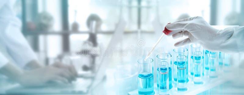 Provrör med flytande i laboratoriumet, droppglass för doktorshandinnehav med att drypa den genomskinliga exponeringsglaspipetten  royaltyfri foto