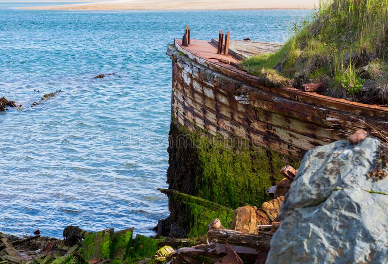 Nature takes its toll. Murmansk. The prow of a big old ship, overgrown with moss and bushes. Nature takes its toll, destroying what man has created. Nature royalty free stock photography