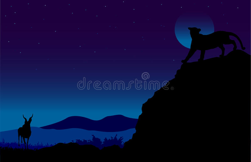 On the Prowl stock illustration