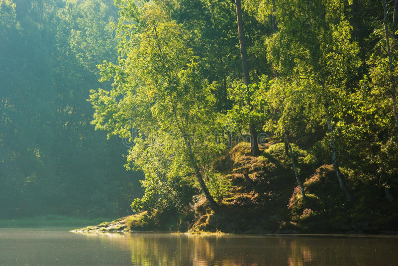 Proximidades do lago fotografia de stock royalty free