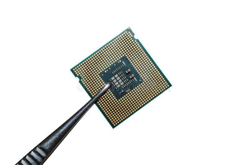 Prozessor in der Pinzette lizenzfreie stockbilder