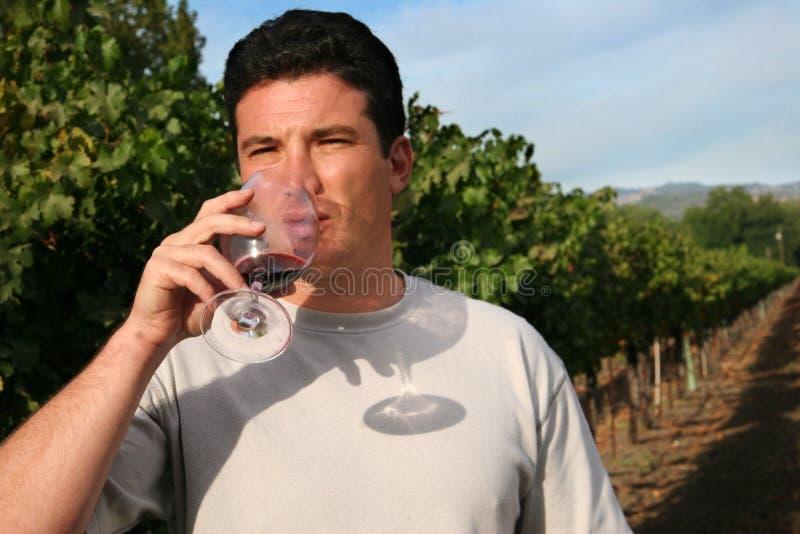 Prueba de vino imagen de archivo
