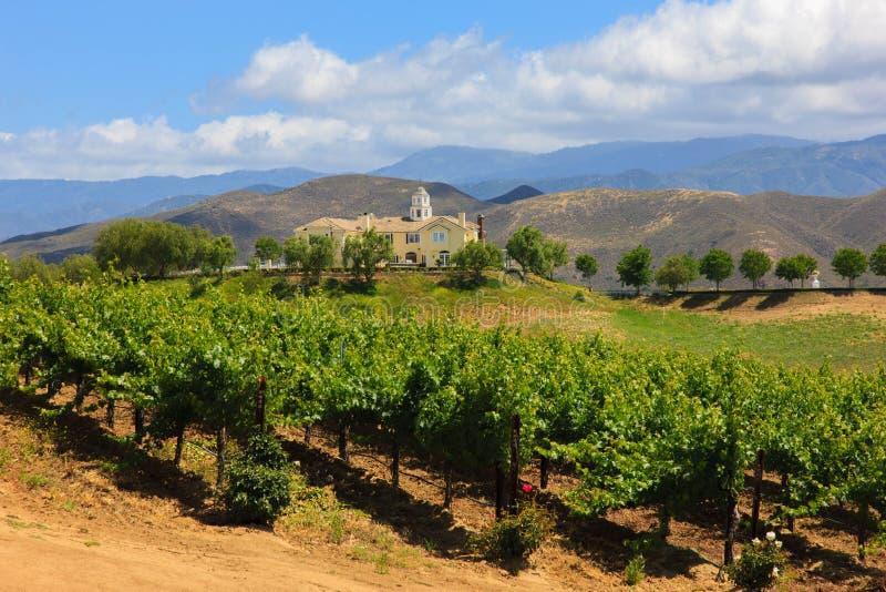 Prueba de vino, California imagen de archivo