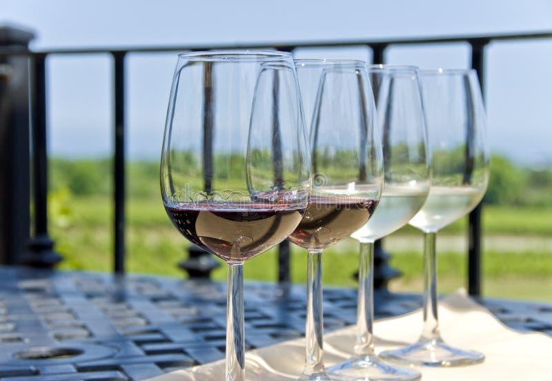 Prueba de vino en el viñedo imágenes de archivo libres de regalías