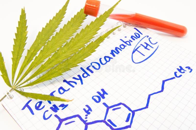 Prueba o análisis para la presencia de Tetrahydrocannabinol THC en sangre La hoja del cáñamo, tubo de ensayo pone cerca de nota c foto de archivo libre de regalías