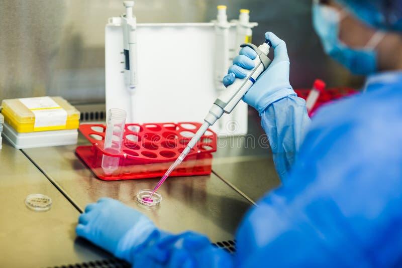 Pruebas de la investigación científica, de la medicina y de laboratorio imágenes de archivo libres de regalías