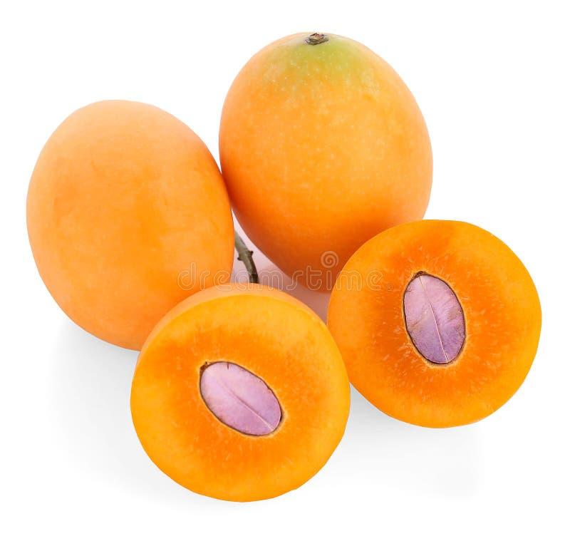 Prugna mariana o frutta tailandese di Plango isolata su fondo bianco m. immagine stock libera da diritti