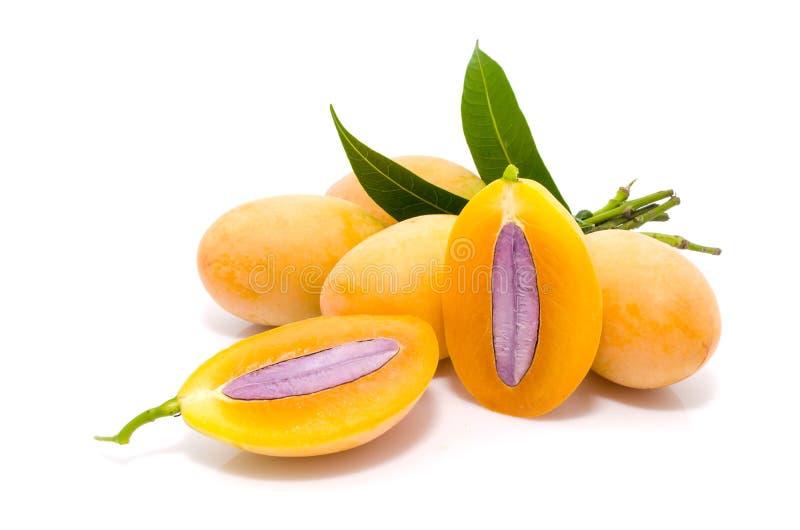 Prugna mariana o maprang (frutta tailandese) fotografia stock