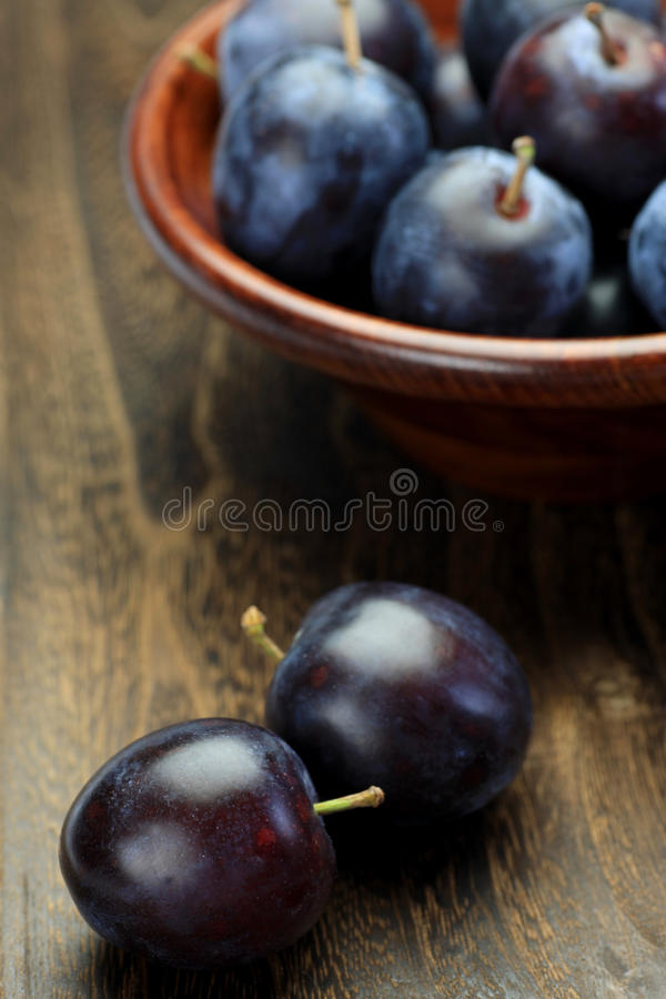 Prune Royalty Free Stock Photography