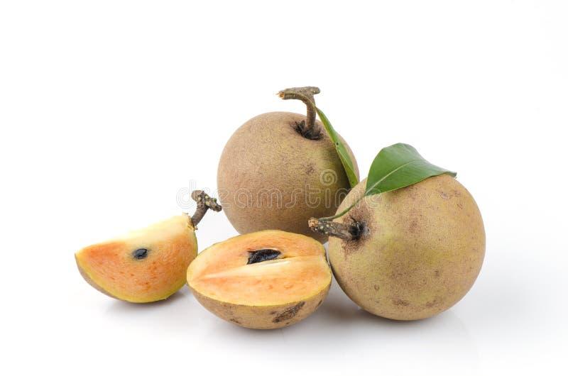 Prune de sapotille, Sapota (zapota de Manilkara (L.) P. Royen). photos libres de droits