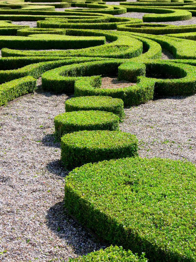 Download Pruned Hedges stock image. Image of backgrounds, park - 2799405