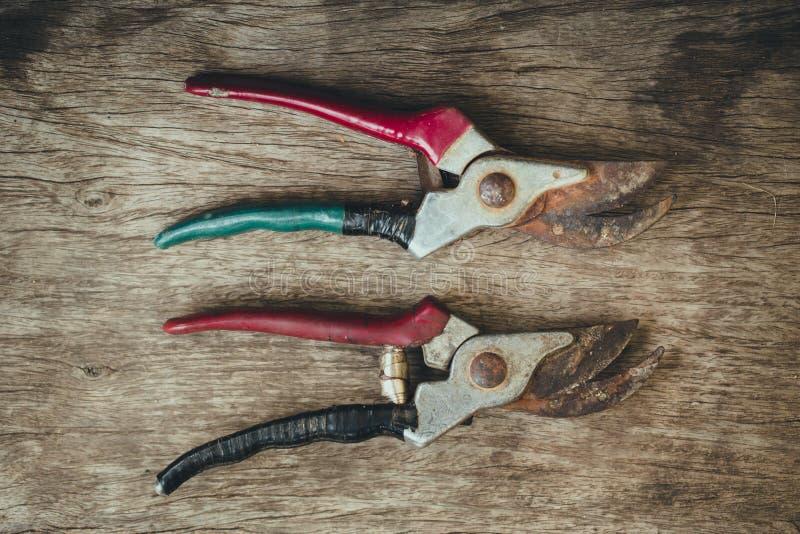 Pruner, oud roestig hulpmiddel stock afbeelding