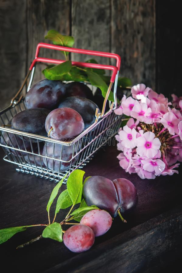 Prunes bleues mûres et juteuses dans un panier en osier dans un style rustique Action de grâces heureuse photographie stock libre de droits