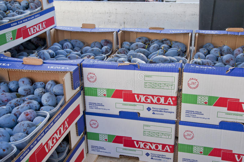 Prunes in Cartons stock photos