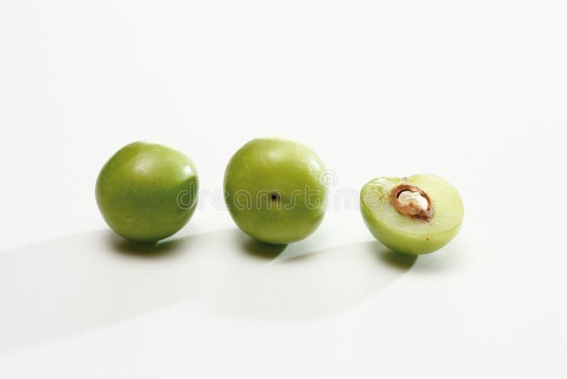 Prunes de cerise (cerasifera de Prunus) photo libre de droits
