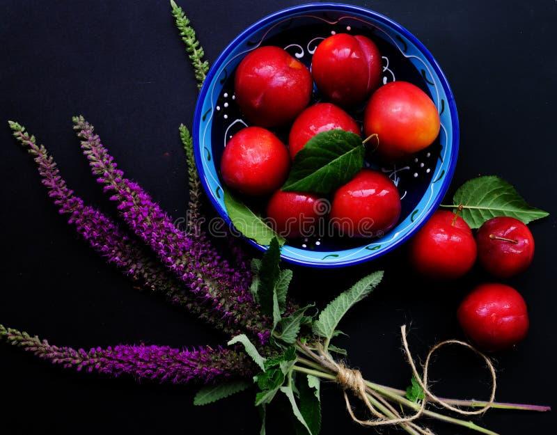 Prunes et fleurs rouges mûres photos stock