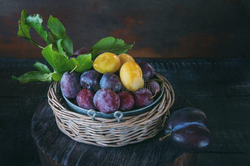Prunes jaunes et bleues mûres et juteuses dans un panier en osier dans un style rustique Action de grâces heureuse photos libres de droits