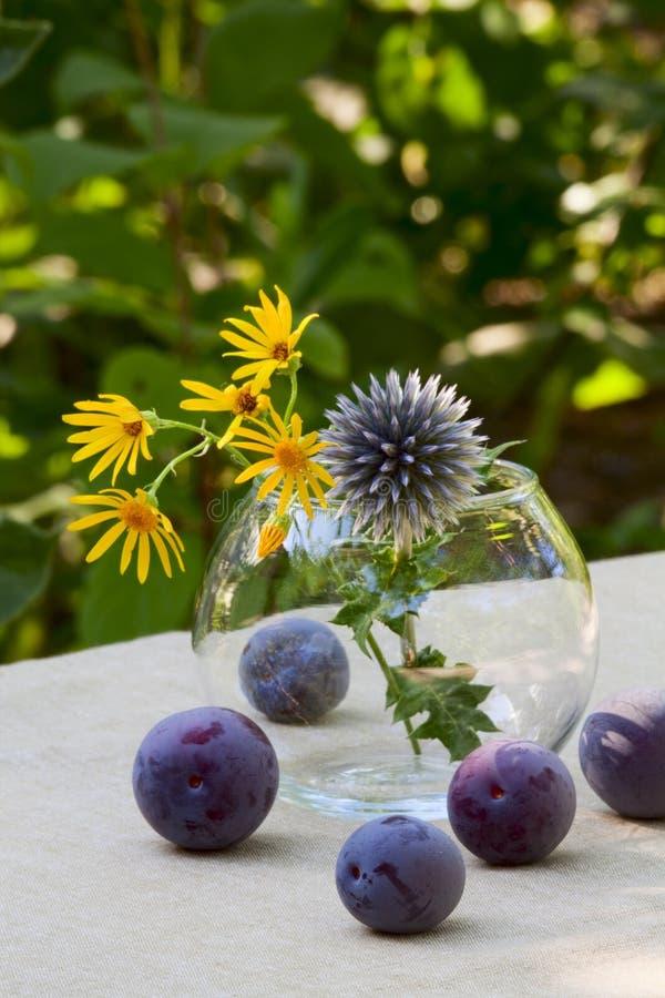 Prunes mûres et fleurs sauvages photographie stock