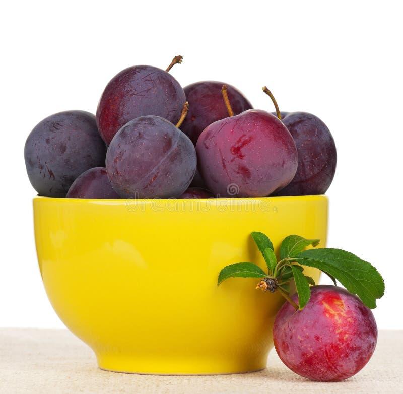 Prunes rouges photographie stock libre de droits