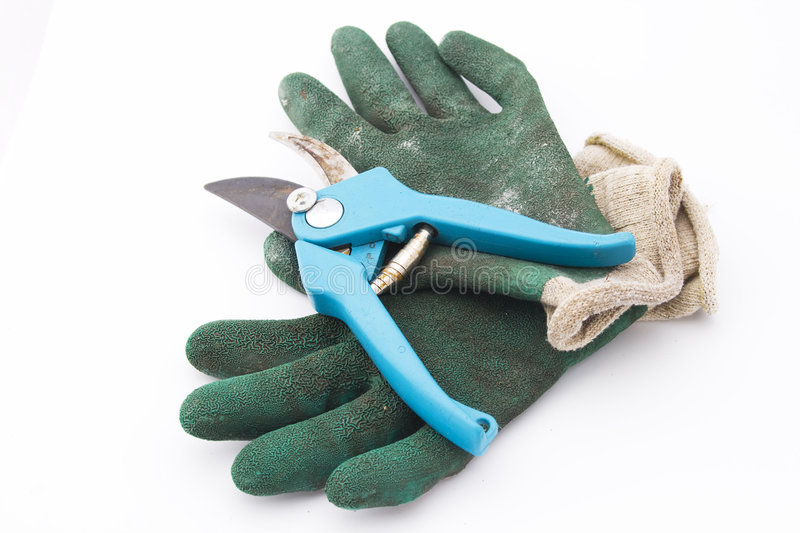 Pruning shears with gloves stock images
