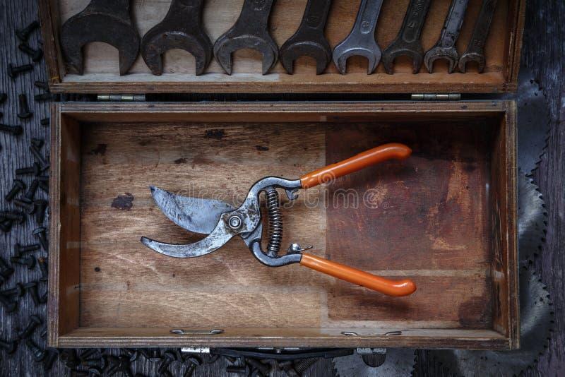 Pruning shears stock image