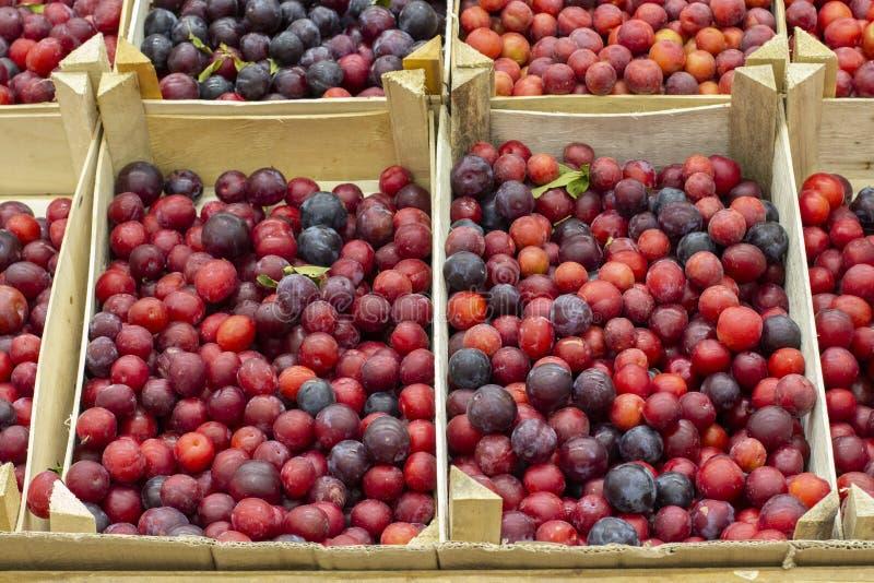 Prunus cerasifera także dzwoni śliwkowa wiśnia Owoc drewniani pudełka na kontuarze sklep wprowadzać na rynek zdjęcia royalty free