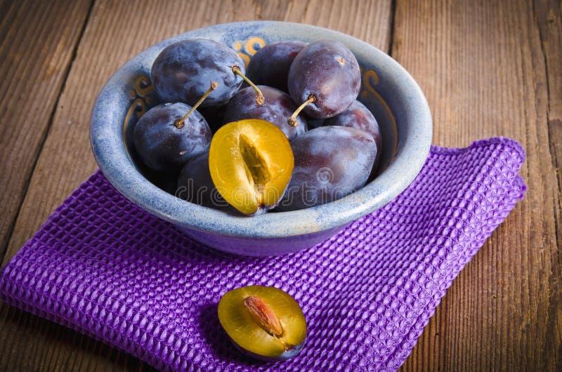 Download Prunus domestica stockbild. Bild von herbst, vitamine - 26374039