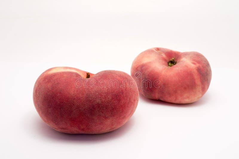 Prunus persica royalty-vrije stock afbeelding