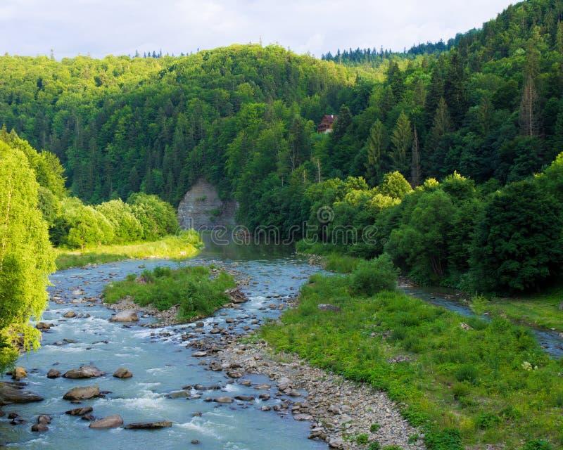 Prut河的树木繁茂的岸有岩石露出的 免版税图库摄影