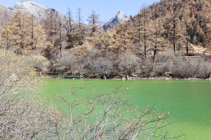 Pryda med pärlor sjön på den Yading naturreserven i Sichuan, Kina arkivbild