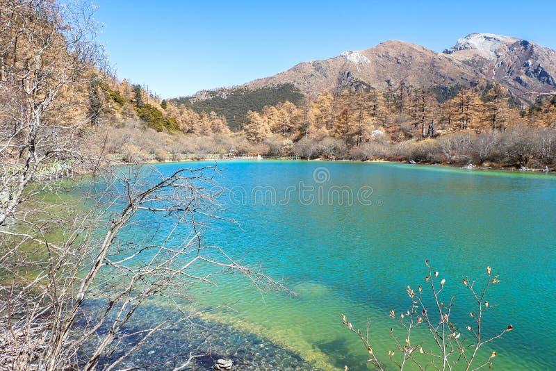 Pryda med pärlor sjön på den Yading naturreserven i Sichuan, Kina royaltyfri fotografi